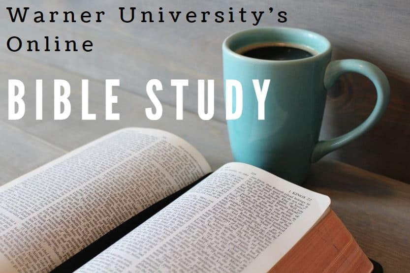 WU Bible Study – Dr. Tim Dwyer – Matthew 8