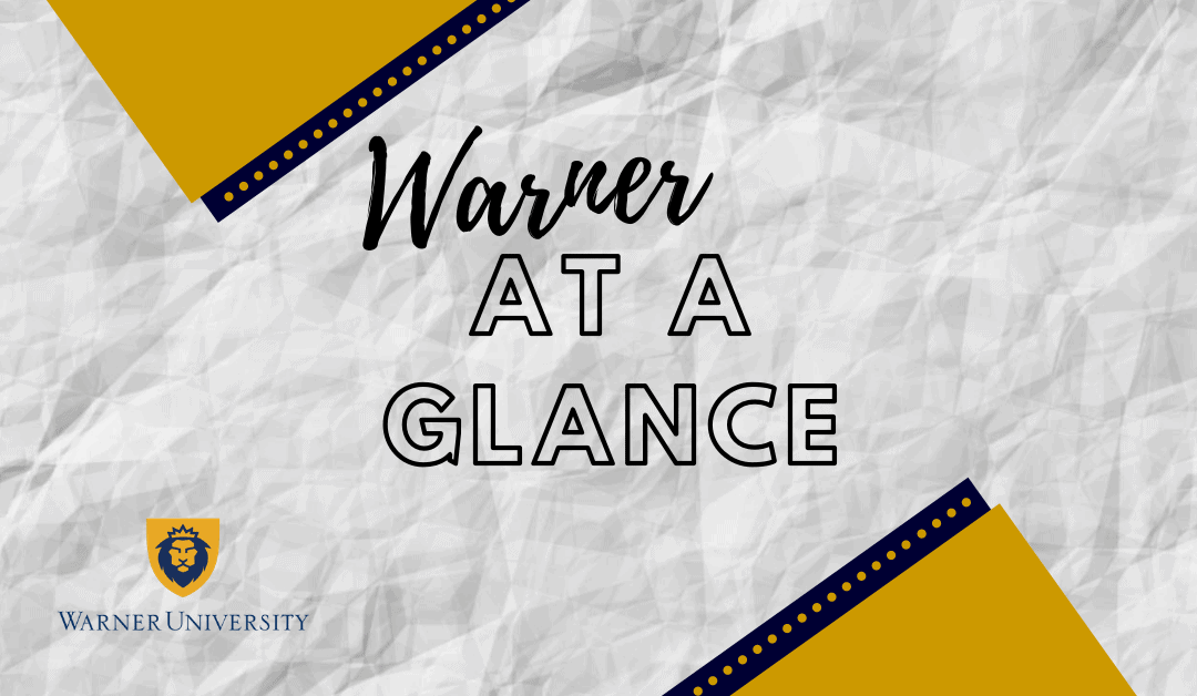Warner At a Glance 2020