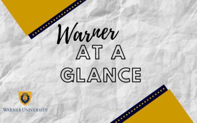 Warner At a Glance 2020